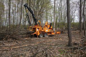 Broyeur forestier sur châssis poids lourd Bandit 21XP ALM