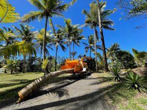 Mécatrucks vend et entretient broyeur de branches et rogneuse de souches Bandit à l'Outremer.