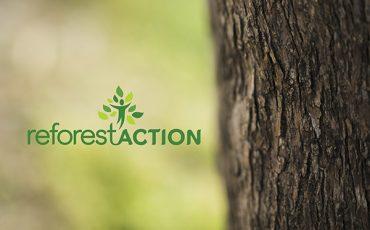 ALM - broyeur et rogneuse Bandit - soutient Reforest'Action en faveur de l'écologie et de la biodiversité.